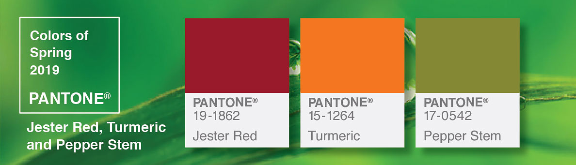 infoGraphic Pantone colors
